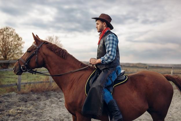 Cowboy cavalgando na fazenda do texas