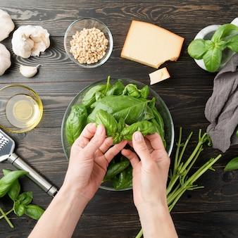Cozinha italiana. passo a passo cozinhando molho pesto italiano. etapa 2 - separando as folhas de manjericão dos caules