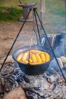 Cozinhando a panela de acampamento com espigas de milho em água fervente sobre a fogueira.