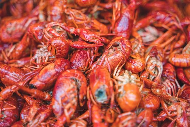 Cozinhe muitas lagostas de lagostas