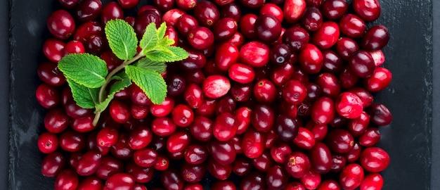 Cranberries frescas de frutas suculentas na lousa de ardósia escura. foco seletivo.