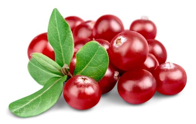 Cranberries vermelhas isoladas no fundo