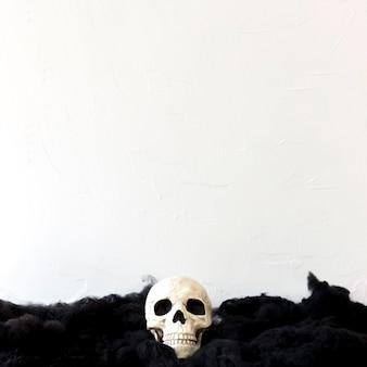 Crânio artificial em material macio