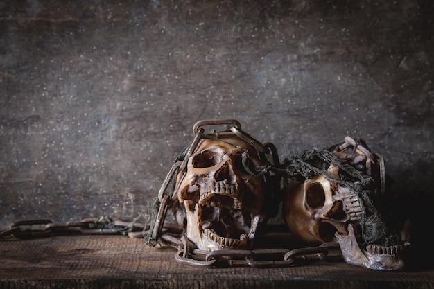 Crânio com corrente na fotografia ainda vida