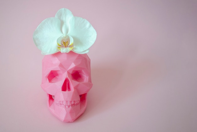 Crânio com flor rosa