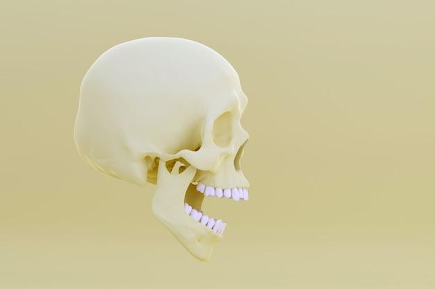 Crânio com mandíbula aberta isolada em amarelo