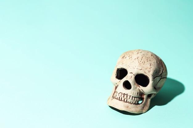 Crânio com uma sombra dura no fundo da casa da moeda