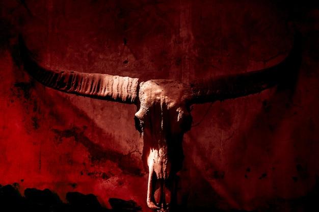 Crânio de búfalo com símbolo místico em fundo vermelho escuro