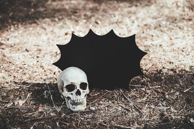 Crânio deitado no chão com decoração de halloween