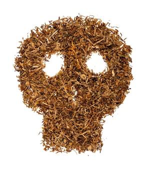 Crânio feito de cigarro e tabaco. isolado em fundo branco