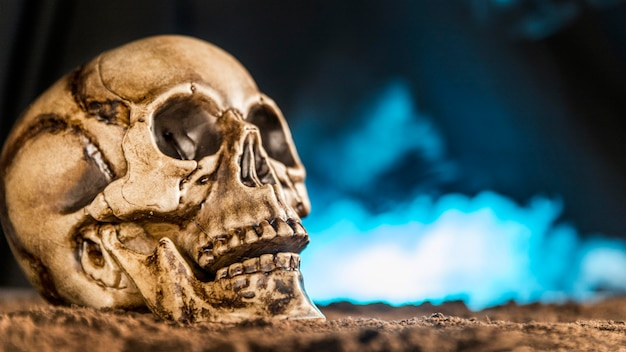 Crânio humano assustador com fumaça
