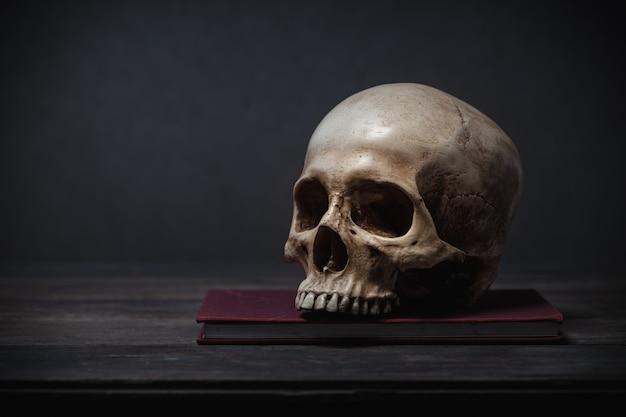 Crânio humano colocado sobre uma mesa