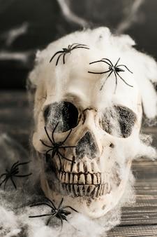 Crânio humano com teia artificial e aranhas