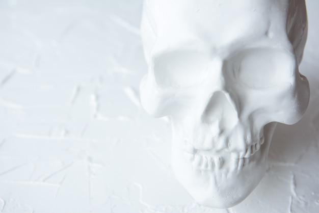 Crânio humano de gesso branco sobre um fundo claro. copie o espaço