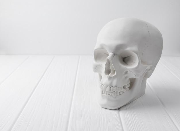 Crânio humano de gesso na mesa de madeira branca.