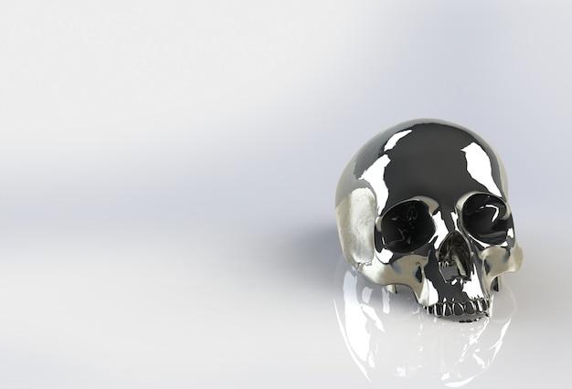 Crânio humano em fundo branco isolado