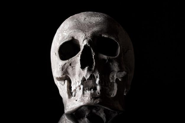Crânio humano em um fundo preto com reflexão