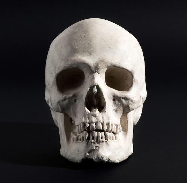 Crânio humano em um fundo preto