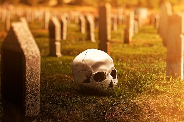 Crânio humano no cemitério com a cena dramática de fundo