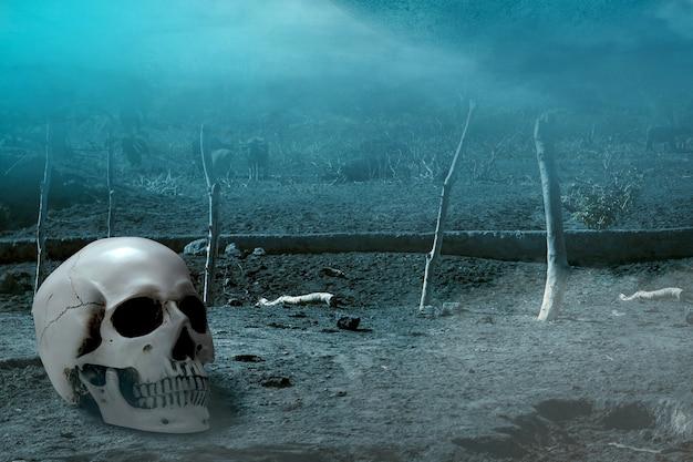 Crânio humano no chão com a cena dramática de fundo