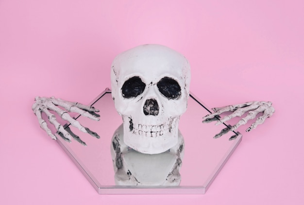 Crânio no fundo rosa pastel na moda.