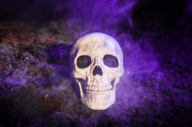 Crânio sombrio na névoa azul no chão