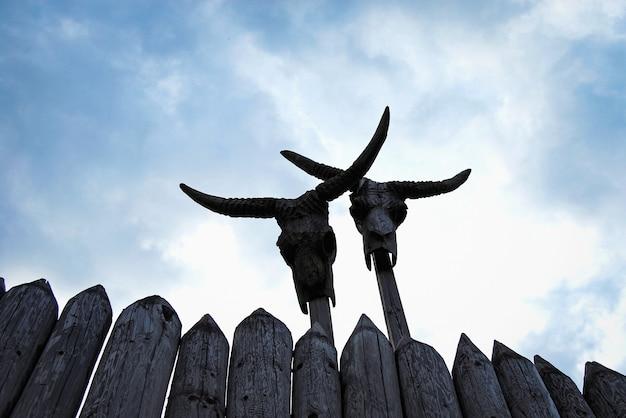 Crânios de gado com chifres em mastros espiando por cima de uma paliçada