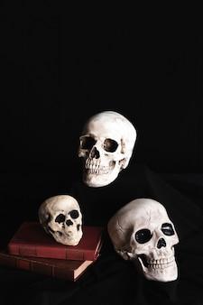 Crânios em livros com fundo preto