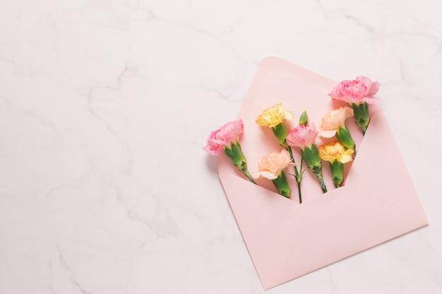 Cravos em envelope rosa