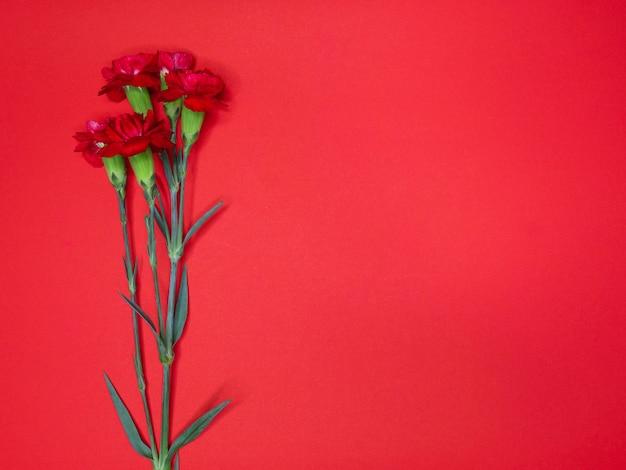Cravos vermelhos em um grande papel vermelho