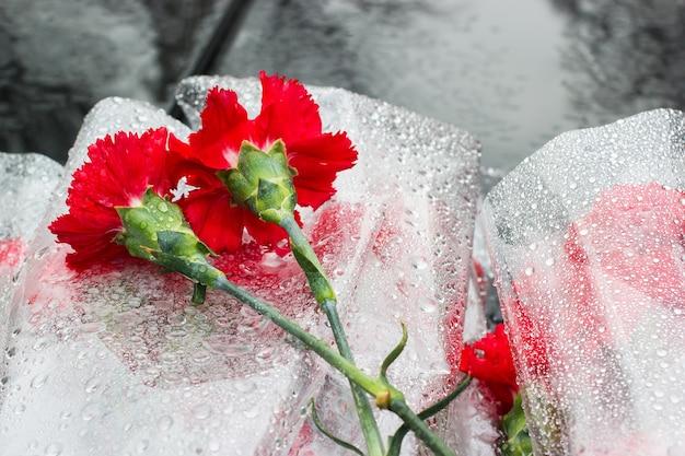 Cravos vermelhos jaziam na laje de mármore escuro