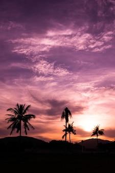 Crepúsculo roxo com lindo brilho do sol
