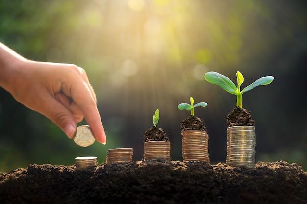 Crescimento de dinheiro economizando dinheiro.