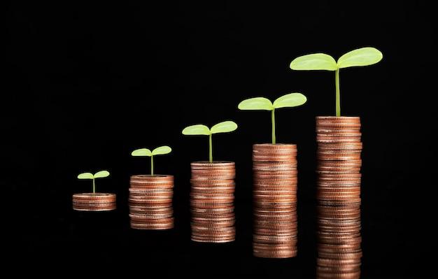 Crescimento de moedas empilhadas com planta em fundo preto, economia de dinheiro e conceito de crescimento do lucro do investimento.