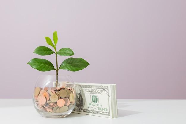 Crescimento do conceito de negócio
