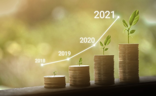 Crescimento dos anos 2018 a 2021