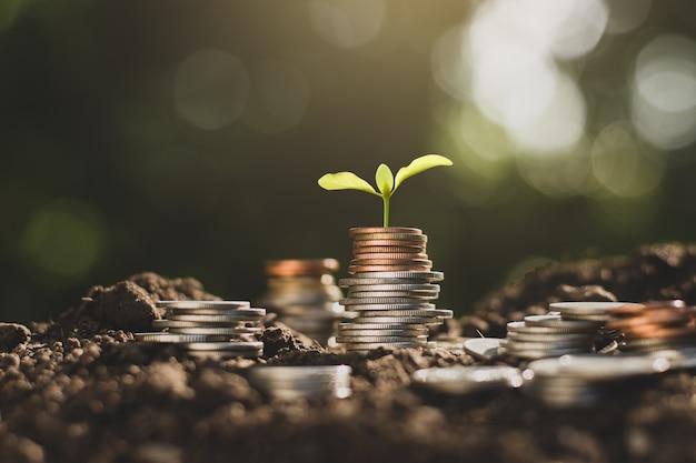 Crescimento financeiro, economizando dinheiro.