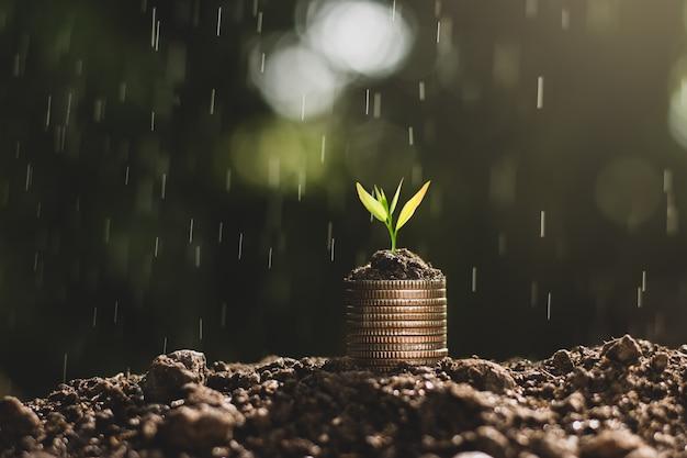Crescimento financeiro, moedas e mudas.