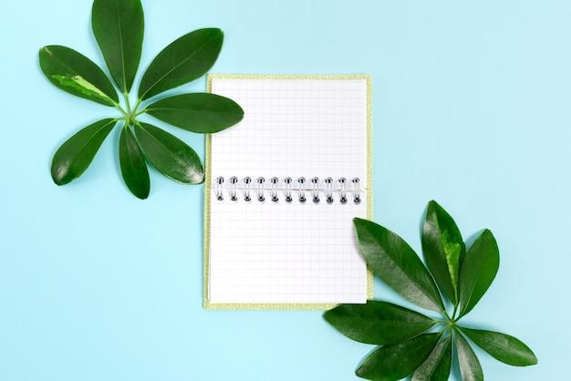 Criação de conteúdo de blog com tema da natureza, prevenção de perdas ambientais, exibição de materiais renováveis, criação de produtos renováveis, materiais orgânicos, planejamento de projetos de jardinagem