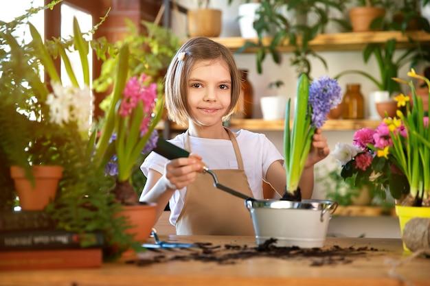 Criança a plantar flores da primavera. jardineiro de menina planta jacinto. menina segurando jacinto no vaso de flores. criança cuidando de plantas. ferramentas de jardinagem. copie o espaço.