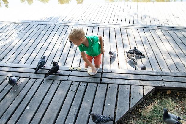 Criança alimentando pombos na rua em dia de verão no parque