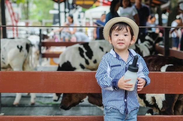 Criança asiática bonito do close up preparada para ordenhar o vitelo pela garrafa do leite no fundo da exploração agrícola