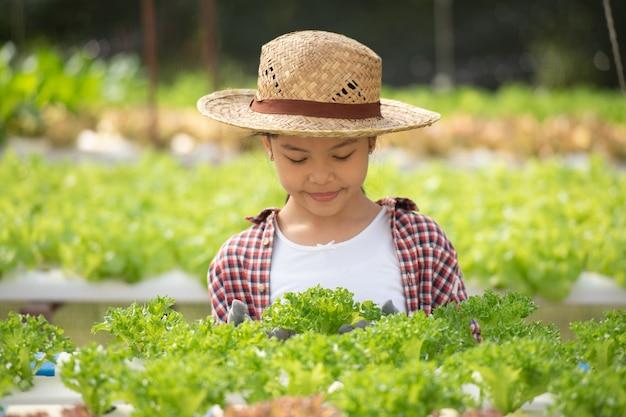 Criança asiática com hidroponia. menina em uma estufa, colhendo vegetais. criança com plantio e agricultura em casa de salad.hydroponic. jovem fêmea de jardinagem folhosa vegetal.agricultura.