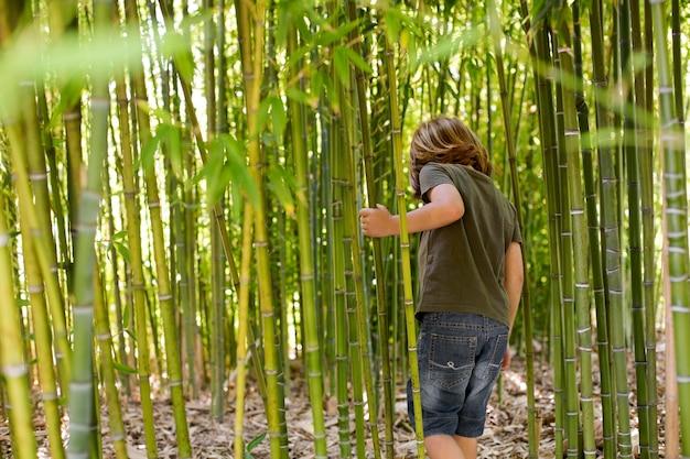 Criança caminhando por uma floresta de bambu