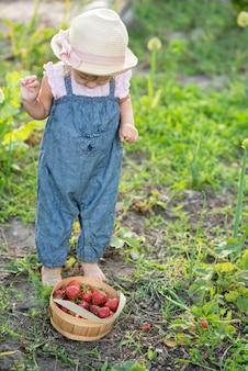 Criança, colheita, morangos