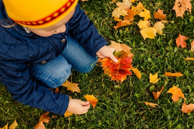 Criança, com, amarelo vermelho, folhas