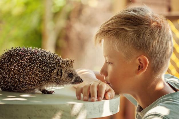 Criança com animal de estimação. menino e ouriço olhando um ao outro
