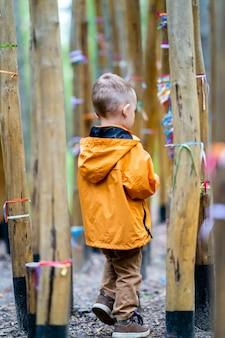 Criança com calças marrons e jaqueta laranja se perguntando sozinha entre árvores de bambu