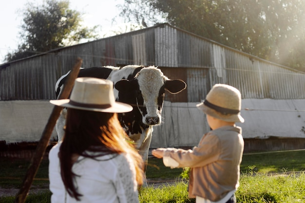 Criança com tiro médio observando vaca