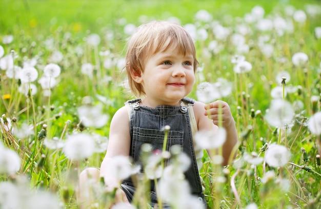 Criança de dois anos no prado de dente-de-leão